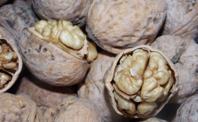 В Киргизии решили переименовать грецкий орех
