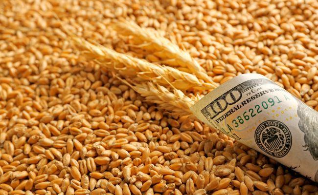 Цены нароссийскую пшеницу достигли рекордного уровня