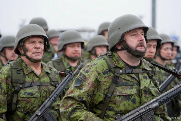Картинки по запросу армия Эстонии