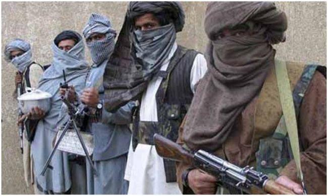 Губернатор Пактии: Нафоне переговоров вДохе талибы пополняют свои ряды